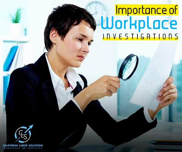 The Necessities And Basics Of Workplace Investigations